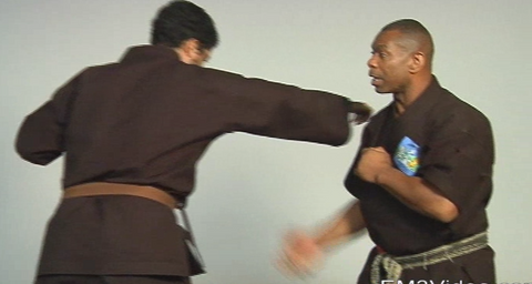 Masterclass Kenpo Volume 3 Practical Kenpo by Robert Temple (On Demand)