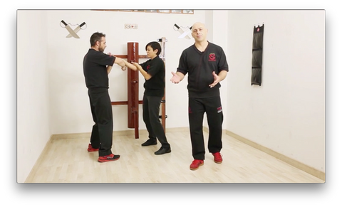 Chi Sao Wing Tsun TAOWS Academy by Salvador Sánchez (On Demand)