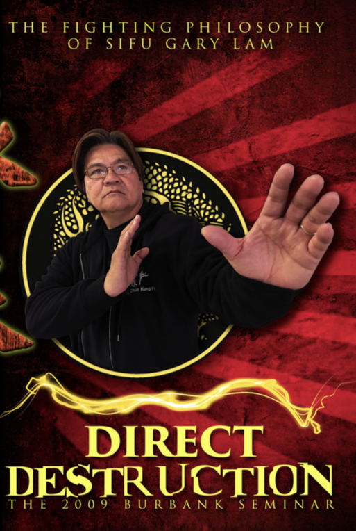 Direct Destruction: The Fighting philosophy of Gary Lam DVD