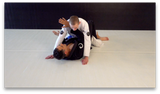 Blue Belt Requirements 2.0 by Roy Dean (On Demand) - Budovideos