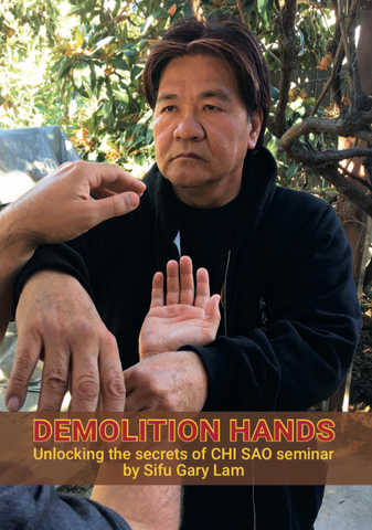 Demolition Hands DVD by Gary Lam - Budovideos