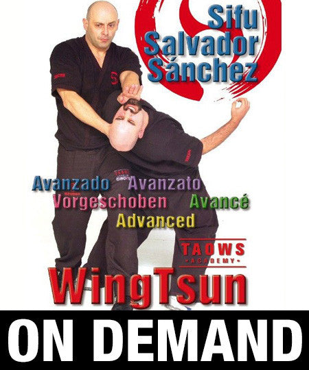Wing Tsun Advanced TAOWS Academy by Salvador Sánchez (On Demand)