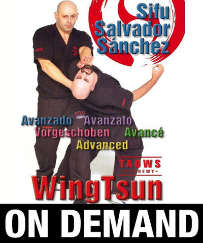 Wing Tsun Advanced TAOWS Academy by Salvador Sánchez (On Demand) - Budovideos