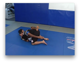 Mixed Martial Arts by Marcus Vinicius Di Lucia (On Demand) - Budovideos