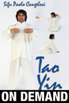 Tao Yin Internal Kung Fu with Paulo Cangelosi (On Demand) - Budovideos