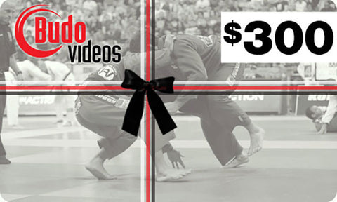 Budovideos Gift Card $300