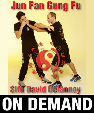 Jun Fan Gung Fu with David Delannoy (On Demand)