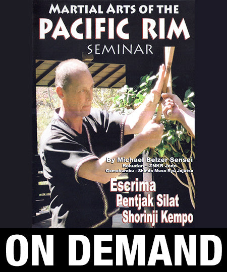 Martial Arts of the Pacific Rim Seminar with Michael Belzer (On Demand)