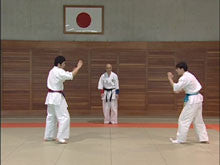 Shoot Aikido DVD 2: Offense & Defense in Actual Combat 2 DVD Set by Fumio Sakurai 4