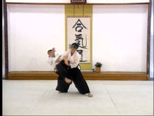 Aikido Training 3 DVD Set from Aikikai Honbu 4