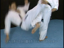 Born to be Strongest: Kyokushin Karate Instructional 4 DVD Set 6