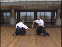 Master Iai Techniques with Bokuto DVD by Ryumon Yamato 7