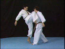 Born to be Strongest: Kyokushin Karate Instructional 4 DVD Set 3