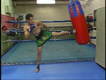 Muay Thai Complete Guide DVD 1 3