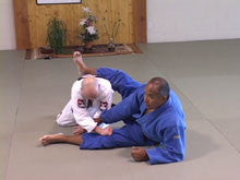 BJJ Seminars Year One DVD by Roy Dean 1