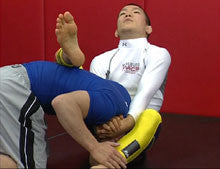 Super Grappling Techniques Vol 2 DVD by Shinya Aoki 2