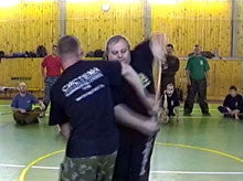 Systema Stick Seminars DVD by Mikhail Ryabko 1