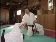 The Secret of Aikido Techniques DVD by Motofumi Yoshida 2