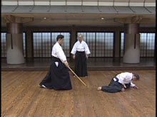 Master Iai Techniques with Bokuto DVD by Ryumon Yamato 3