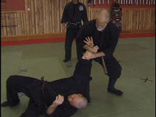 Gyokko Ryu Kosshi Jutsu Advanced Unarmed Combat 6 DVD Set by Stephen Hayes 2