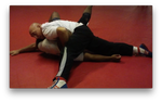 The Pinisher: Pinning for Grappling and MMA by Wade Schalles  (On Demand) - Budovideos