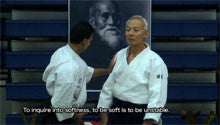 Seishiro Endo Seminar in Washington DC DVD 6