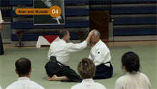 Seishiro Endo Seminar in Washington DC DVD 3