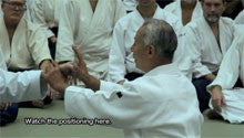 Seishiro Endo Seminar in Washington DC DVD 4