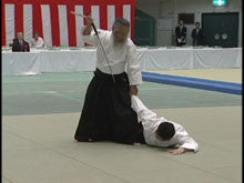 46th All Japan Aikido Demonstration DVD 5