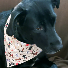 Load image into Gallery viewer, Colorful Dog Bandanas