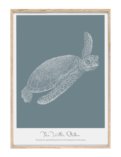 The Turtle Poster - Evermento - Posters that matter