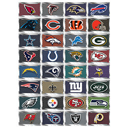 NFL license plate stickers product detail