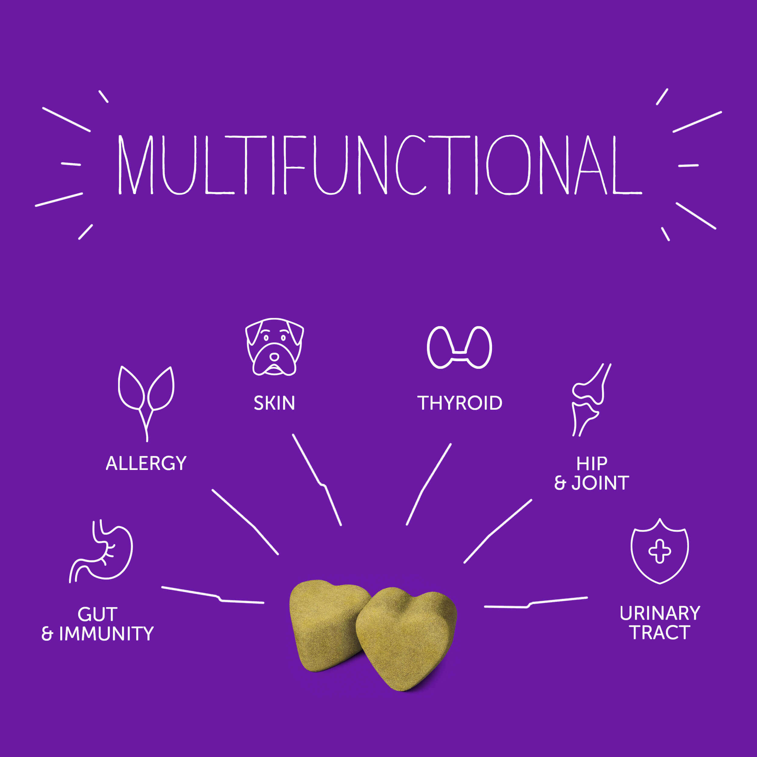 Multifunctional - Gut & Immunity, allergy, skin, thyroid, hip & joint, urinary tract