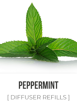 Peppermint - 325ml Diffuser Refill