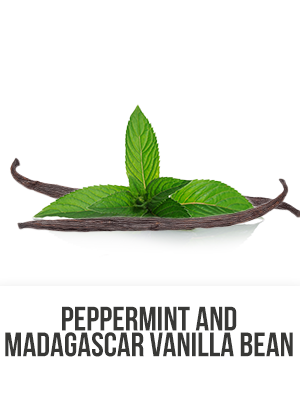 Peppermint/Madagascar Vanilla Bean - 4 oz. Reed Diffuser Oil
