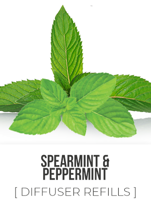 Spearmint/Peppermint Blend - 325ml Diffuser Refill