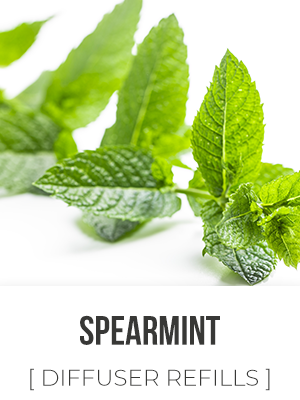 Far West Spearmint - 325ml Diffuser Refill