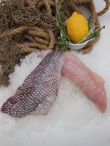 Atlantic Black Sea Bass - Fillet