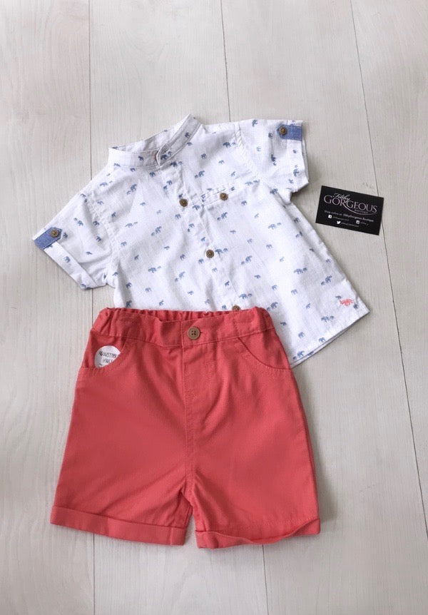 Boys Orange Short Shirt Set
