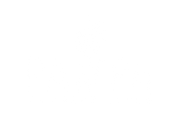 PAMPA Concept Store