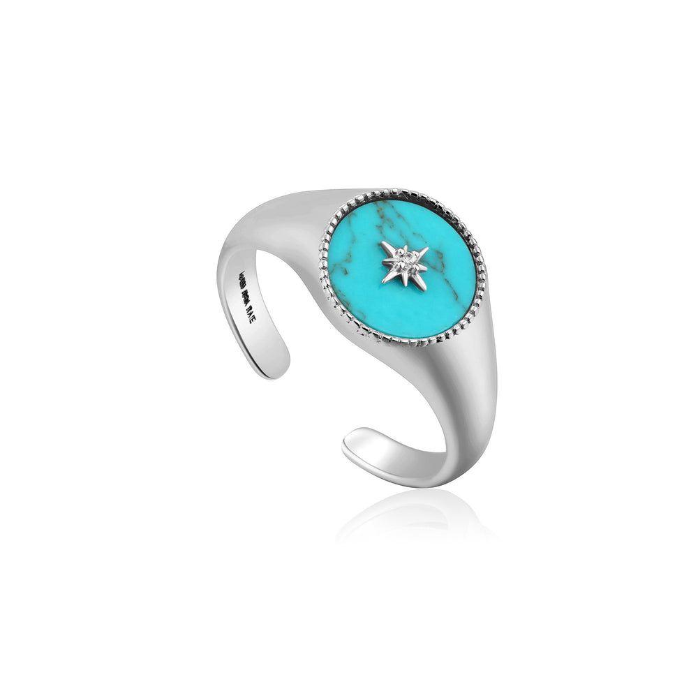 Load image into Gallery viewer, Silver Turquoise Emblem Signet Ring