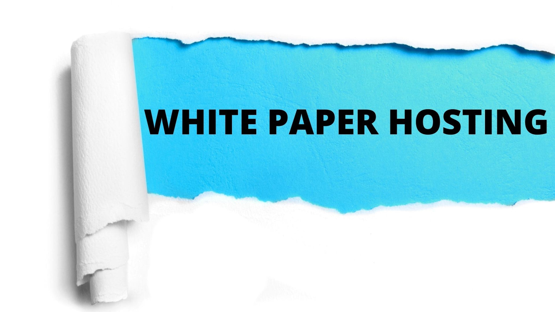 The Pros and Cons of Whitepaper Hosting