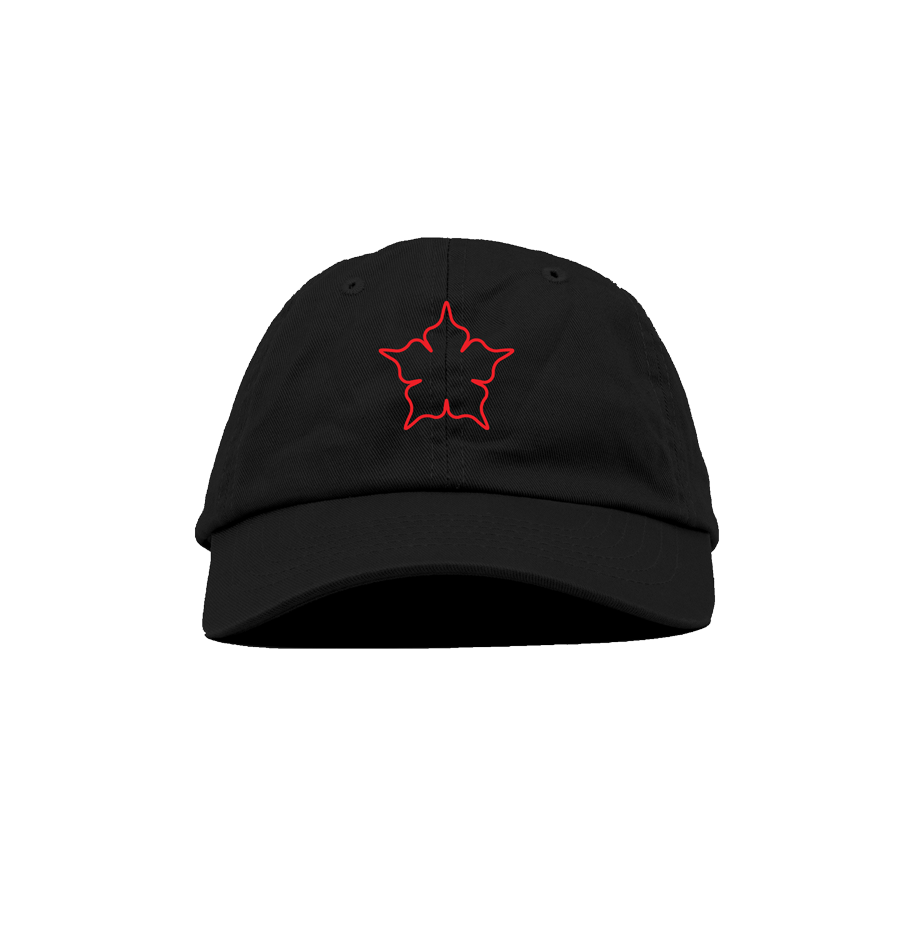 CL H₩A /5-Star Hybrid Dad Hat