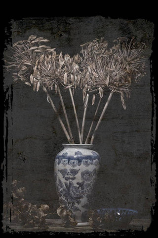 Agapanthus Seedheads in a Vase