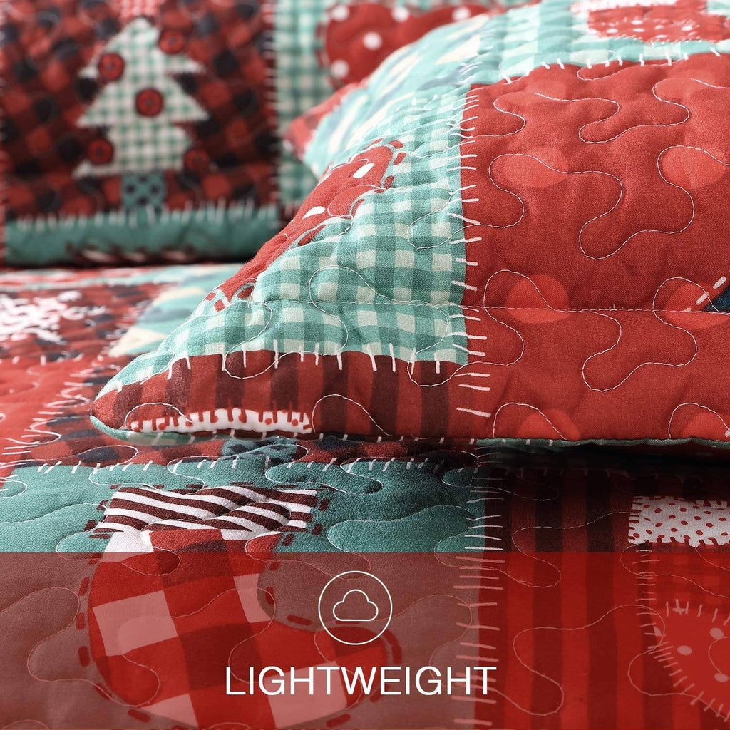 Tempcore Christmas Quilt,2 Piece Twin Quilt Set, Microfiber Lightweight Soft Bedspread Coverlet for All Season, Twin Printed Quilt(1 Quilt,1 Shams)