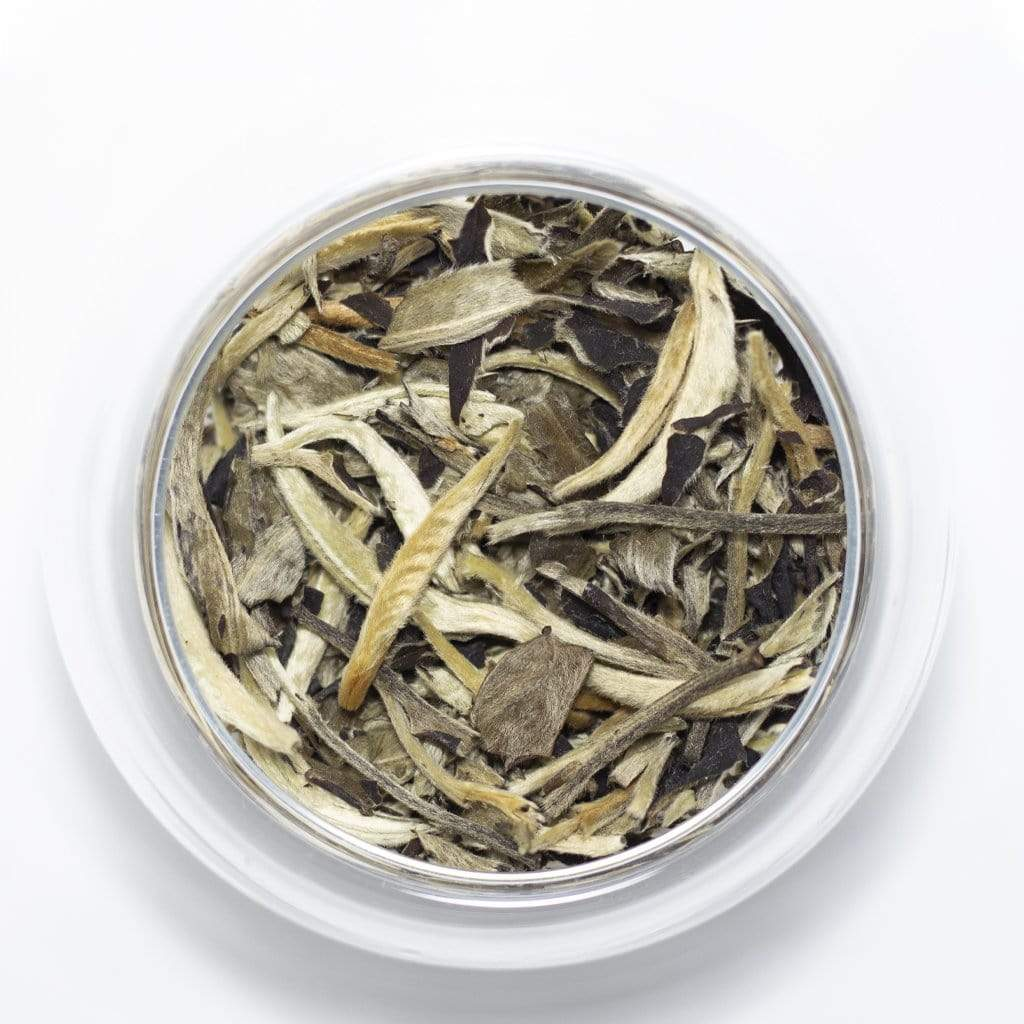 Sociéthé 103 MOON LIGHT WHITE 100 White Tea 50g