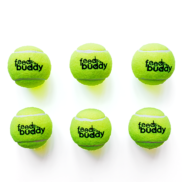 Feed Buddy Tennis Balls main
