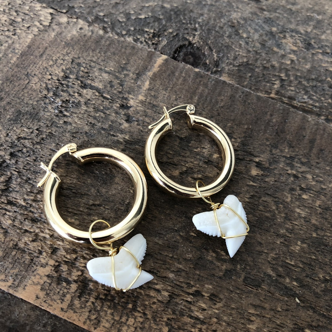 Shark Tooth Hoops- 1