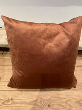 Load image into Gallery viewer, Vanilla fly velvet cushion