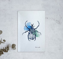 Load image into Gallery viewer, Insect | Beetle